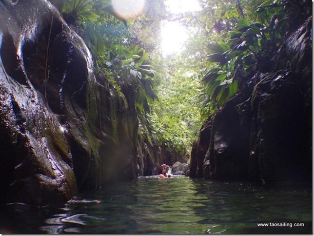 Canyon de la rivière Moustique