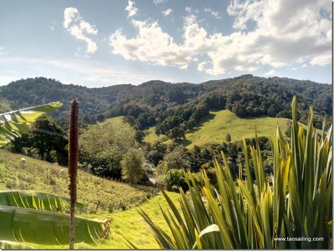 Whangarei vue du Airbnb